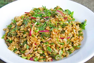 Farro with fresh herb salad