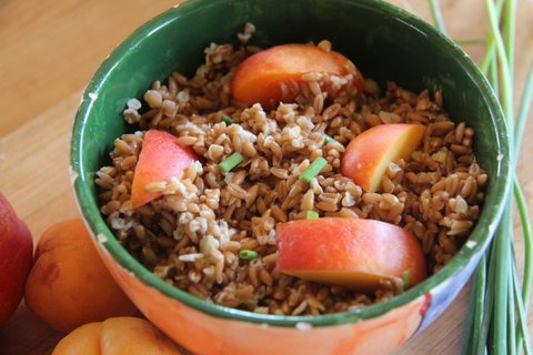Farro and Grilled Stone Fruit Salad