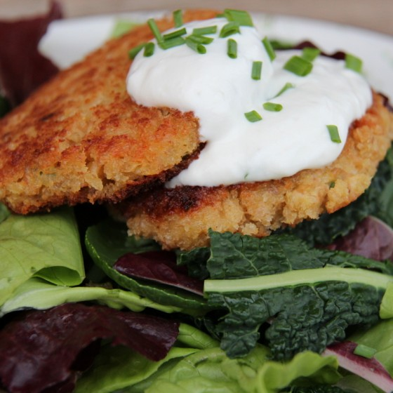 Chive Farro Cakes with Lemon Yogurt Dressing on a Bed of Fresh Greens