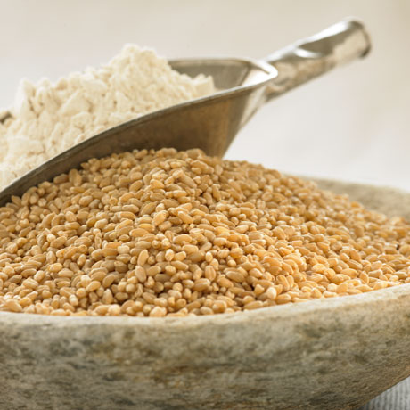 Organic Pasayten Hard White Wheat Berries and Flour