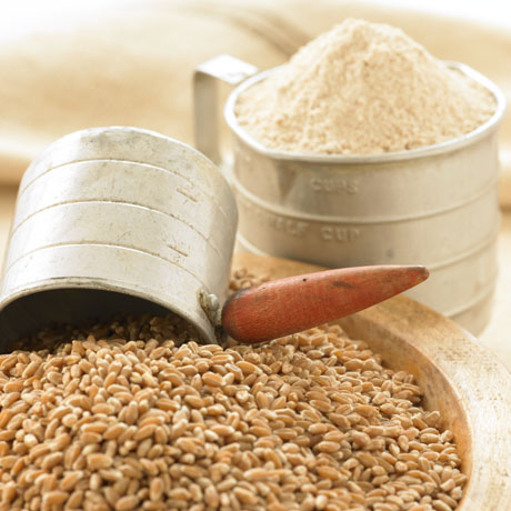 Organic Methow Hard Red Wheat Berries and Flour