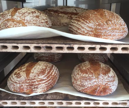 Customer Profile: Grampy Pat's (Almost Famous) Sourdough