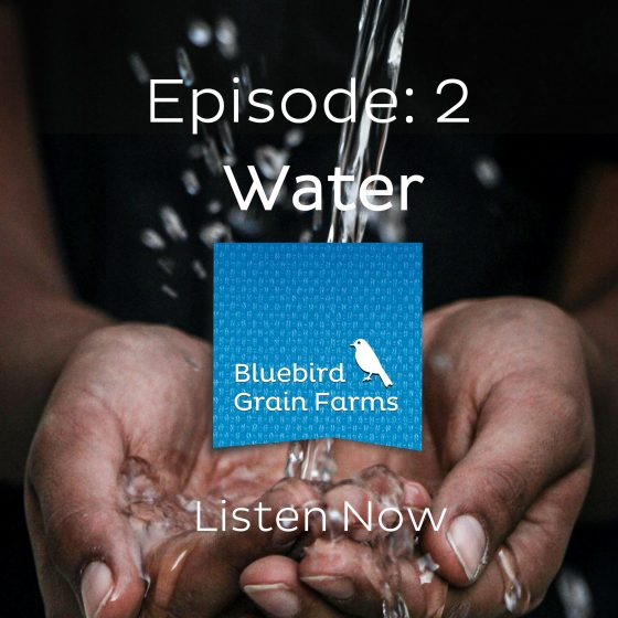 Episode 2 - Water, Listen to our Farm direct Podcast Now