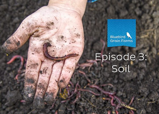 Episode 3: Soil, Listen to our Farm Direct Podcast Now