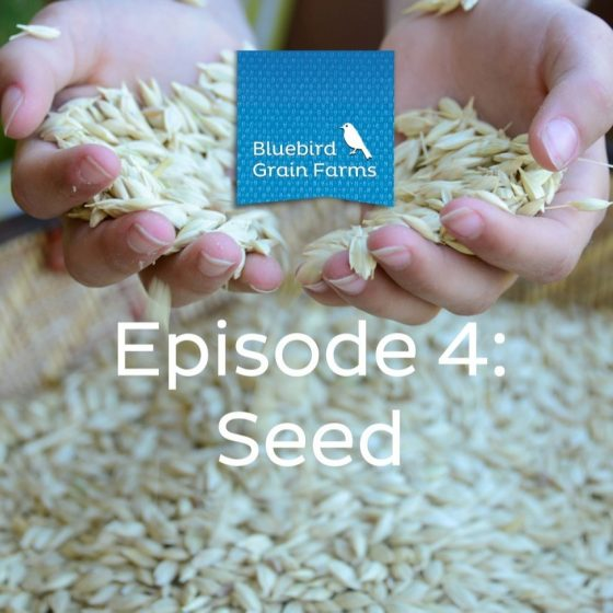 Episode 4: Seed, Listen to our Farm Direct Podcast Now