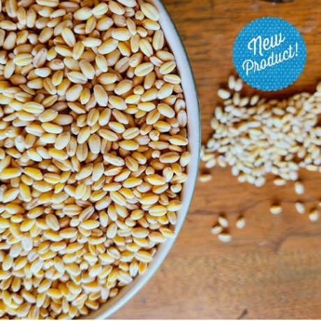Organic Sonora Soft White Wheat Berries and Flour
